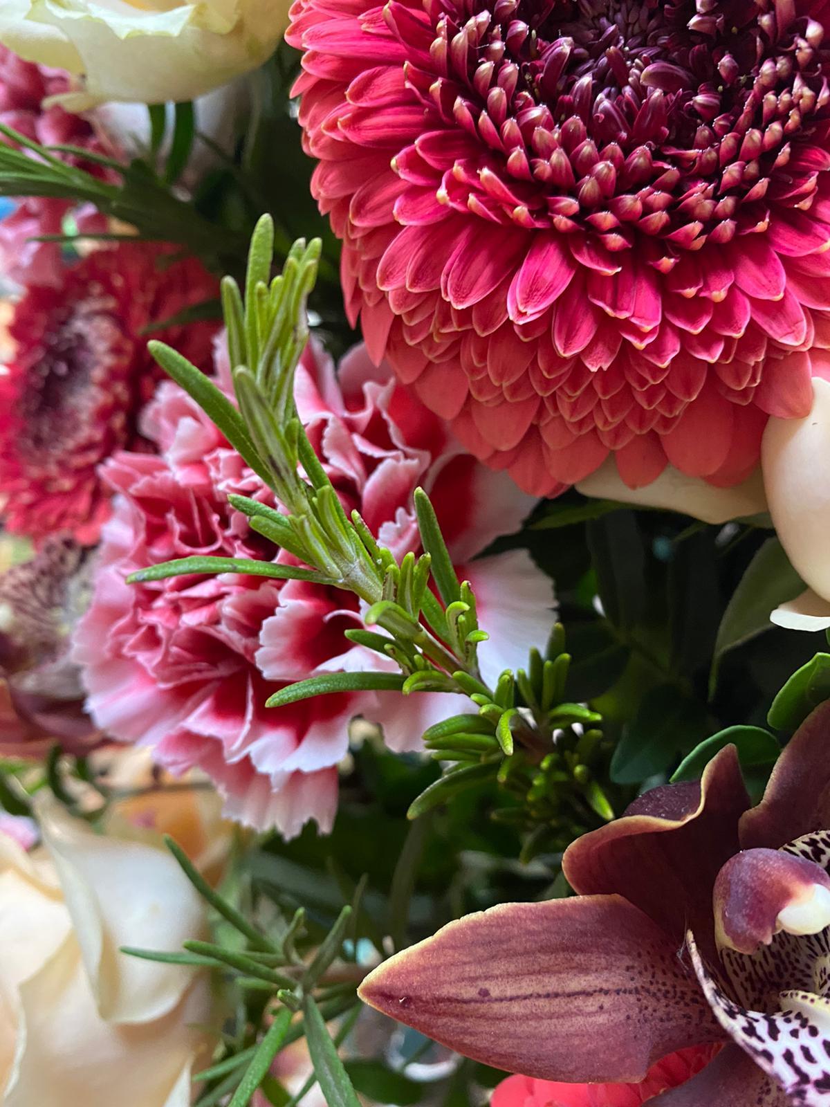 flores tridp